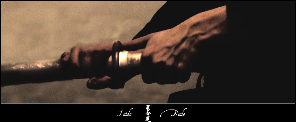 Iaido_by_Lege